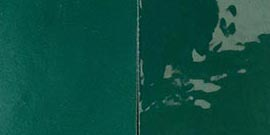 1096, Verde pino